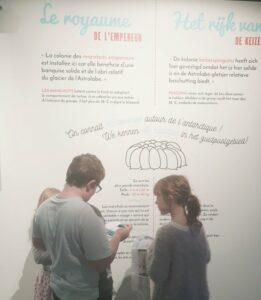 Quiz bij tentoonstelling Antarctica