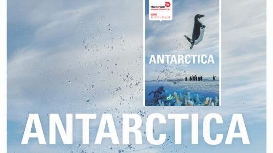 expo antarctica