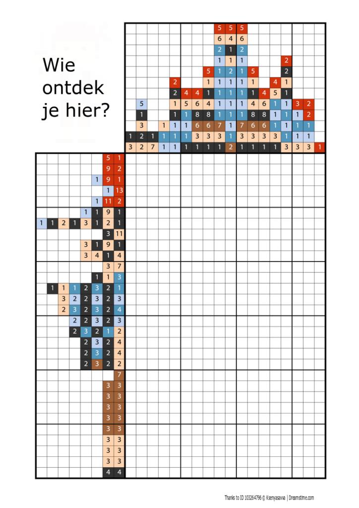 coderen met pixel tekeningen - piraat